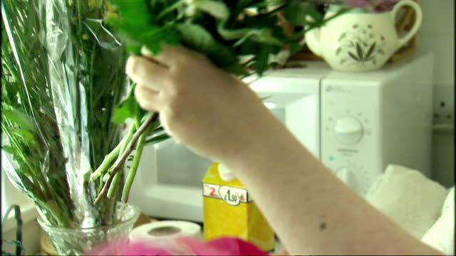 interior shots of susan boyle looking at flowers and putting them in vases in kitchen on april 20, 2009 in bathgate, scotland. - スーザン ボイル点の映像素材/bロール
