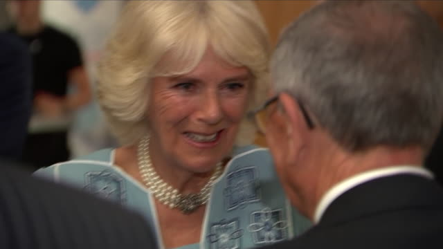 interior shots of the duchess of cornwall meeting various guests and officials at the park lane hilton hotel for the nhs heroes awards on 14th may... - richard hammond stock videos & royalty-free footage