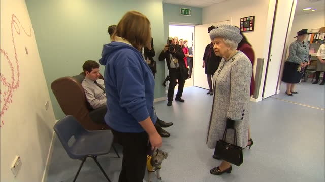 vídeos de stock, filmes e b-roll de interior shots of the queen visiting aberdeen royal infirmary and meeting patients and hospital staff - 2017