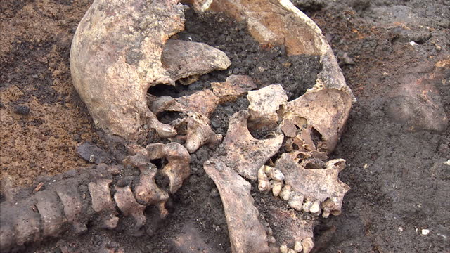 interior shots of the skeletal remains of an adult and child that appear to have been buried together, with cutaway shots of archaeologists working... - archaeologist stock videos & royalty-free footage
