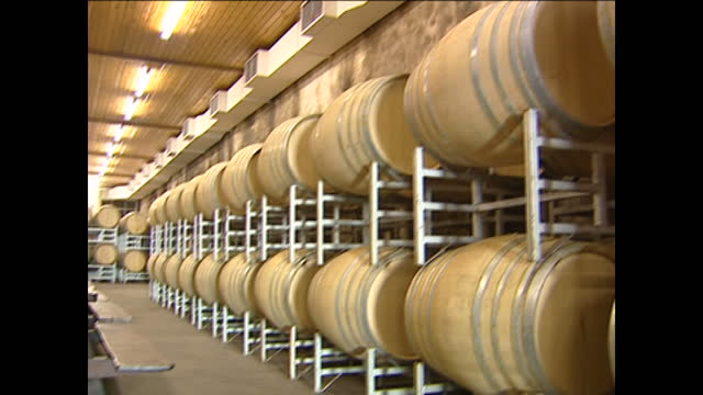 interior shots of wine barrels in storage in the estate's cellar and a close up shots of the barrel maker radoux and vineyard's branding on the... - stellenbosch stock videos and b-roll footage
