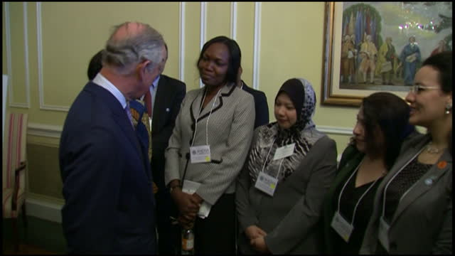 stockvideo's en b-roll-footage met interior shots pf prince charles meeting guests and officials at a magna carta 2015 reception at the national archives>> on march 18 2015 in... - national archives washington dc