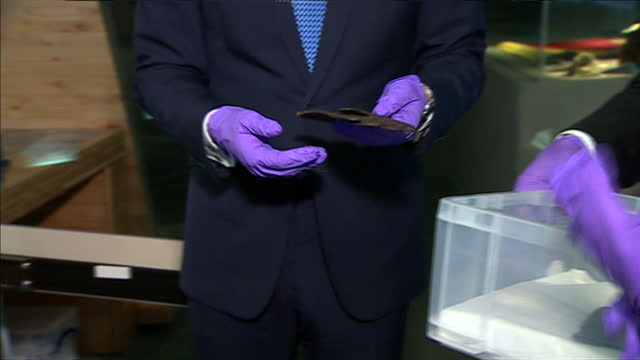 interior shots prince william wearing latex gloves looking over exhibition on july 17 2014 in london england - latex stock videos & royalty-free footage