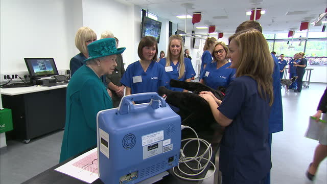 Interior shots Queen Elizabeth II meeting student veterinarians and being shown how they learn to anaesthetise dogs on visit to the New School of...