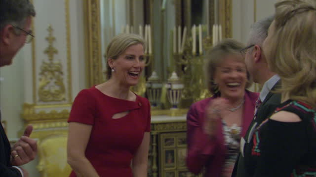 Interior shots Sophie RhysJones The Countess of Wessex attends Thirtieth Anniversary Reception for ChildLine at Buckingham Palace on March 17 2016 in...