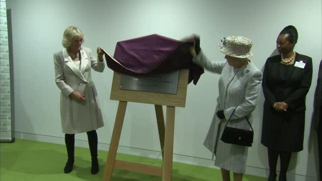 vídeos de stock, filmes e b-roll de interior shots the queen & camilla unveil plaque for new barnados offices. the queen and camilla unveil plaque at barnados hq on december 10, 2013 in... - ilford