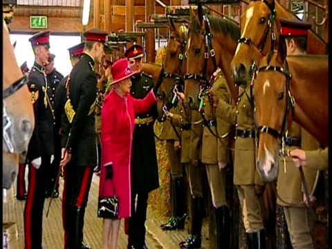 stockvideo's en b-roll-footage met interior shots the queen visits the st john's wood barracks meets soldiers horses of the king's troop royal horse artillery exterior shots the queen... - britse leger