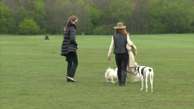 Interior shots various people taking their dogs for a walk in park Exterior shots dogs dog walkers People Walking Dogs in Park on April 21 2012 in...