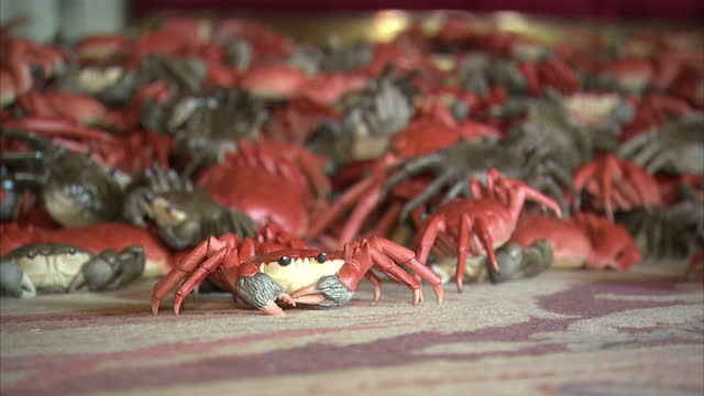 Interior shows Ai Wei Wei art installation in Blenheim Palace red and grey crabs laid on floor at Blenheim Palace on September 29 2014 in Woodstock...