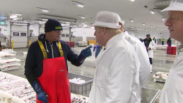 interior views of prime minister boris johnson at peterhead fish market and greeting and talking with staff on 6 september 2019 in peterhead, united... - fish stock videos & royalty-free footage