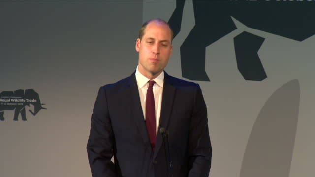 interior views of prince william being introduced to the stage by united nations ambassador aidan gallagher and making a speech at the 2018 illegal... - battersea park stock videos & royalty-free footage