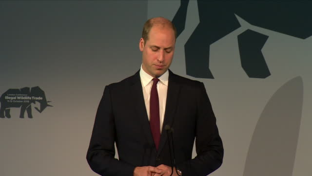 Interior views of Prince William making his closing remarks of his speech at the 2018 Illegal Wildlife Trade Conference at Battersea Park on October...