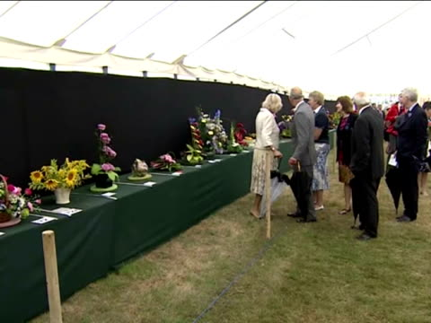 internal shots of prince charles and camilla, duchess of cornwall looking at flower arrangements on display in marquee at sandringham flower show... - see other clips from this shoot 31 stock videos & royalty-free footage