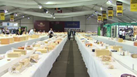 international cheese awards: britain now produces 700 varieties of cheese; england: cheshire: nantwich: dorfold park: int cheese laid out on tables... - sachet stock videos & royalty-free footage