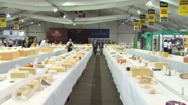 international cheese awards: britain now produces 700 varieties of cheese; england: cheshire: nantwich: dorfold park: int cheese laid out on tables... - ナントウィッチ点の映像素材/bロール