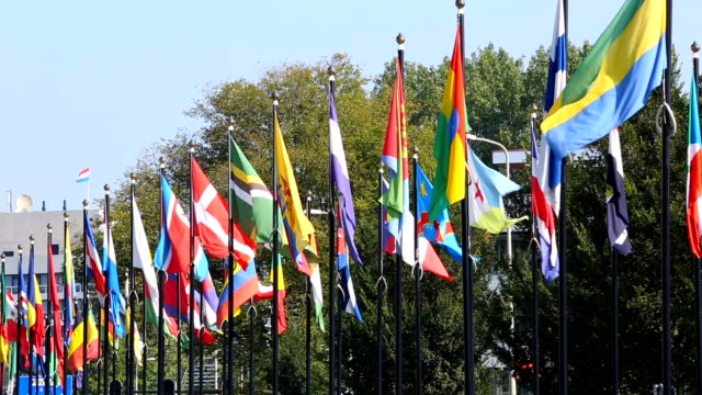 international flags in the hague - governo video stock e b–roll
