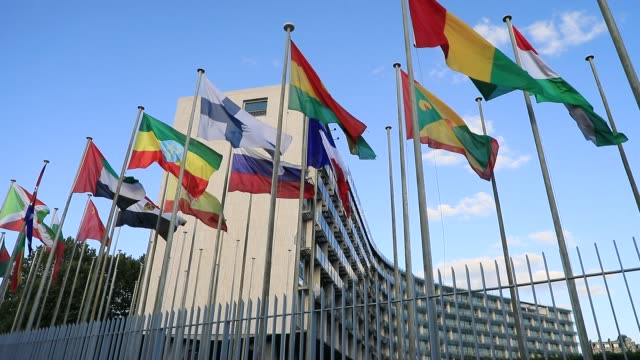 vidéos et rushes de international flags wave in front of the unesco headquarters on july 6, 2020 in paris, france. the united nations educational, scientific... - unesco