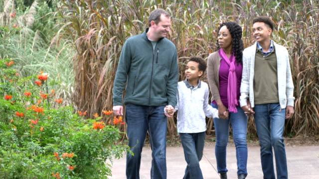 interracial family with two boys walking in park - mixed race person stock videos & royalty-free footage