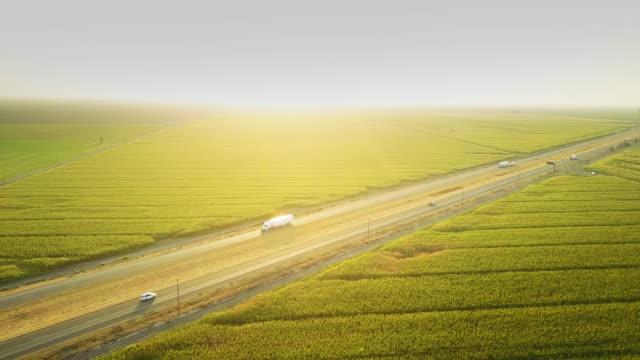 トウモロコシ - 空中ショットを道路横断