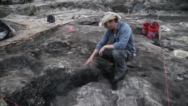 interview - archaeologist dr. ryan franklin, with the archaeological and historical conservancy, explains the dig that he is taking part in to... - digging stock videos & royalty-free footage
