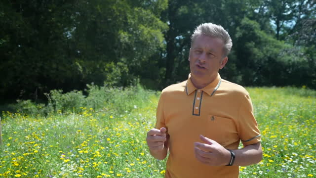 interview chris packham, naturalist, about testing for bovine tb in relation to the campaign to save geronimo the alpaca - mammal stock videos & royalty-free footage