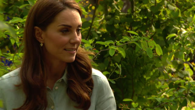 interview duchess of cambridge about her back to nature garden the chelsea flower show and how nature benefits our physical and mental wellbeing - chelsea flower show stock videos & royalty-free footage