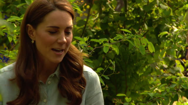 interview duchess of cambridge talks about why she has created a back to nature garden at chelsea flower show - chelsea flower show stock videos & royalty-free footage