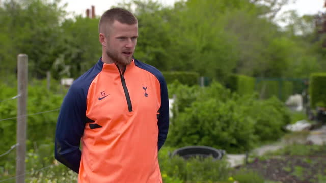 interview eric dier, footballer tottenham hotspur fc, about growing his own food - leisure activity stock videos & royalty-free footage