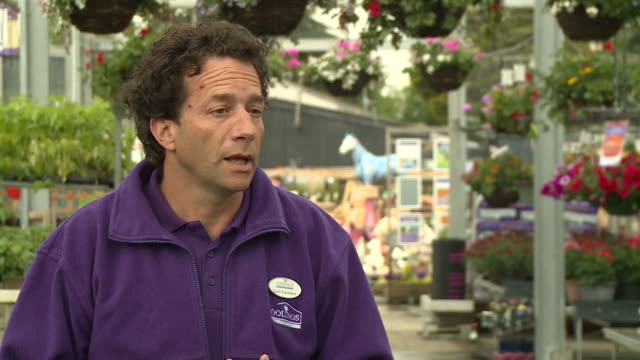 interview gary carvosso coolings garden centre about the business reopening after coronavirus lockdown and how worried he was when lockdown first... - recreational pursuit stock videos & royalty-free footage