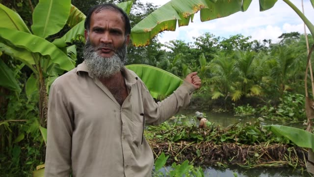 interview of floating garden's people that work there bangladesh's annual monsoon rainfalls submerge lowland areas for months on end but in the rural... - hyacinth stock videos & royalty-free footage