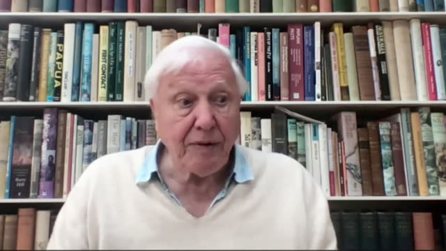 """interview sir david attenborough, about the importance of younger generation being engaged with climate change """"that's the most important hope, it's... - the way forward stock videos & royalty-free footage"""
