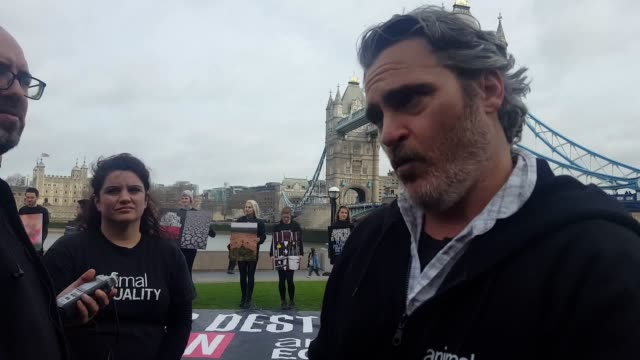 "interview with oscar and bafta nominee joaquin phoenix who has made a plea for people to ""go vegan"" as he led an animal equality protest in central... - セレブリティ点の映像素材/bロール"