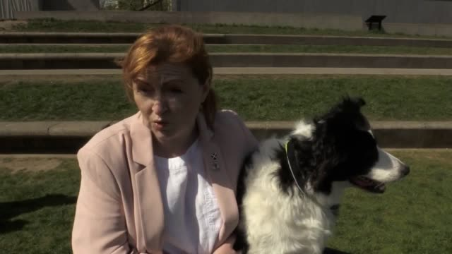interview with snp msp emma harper, with her dog maya, who won the first holyrood dog of the year competition. followed by an interview with bill... - member of the scottish parliament stock videos & royalty-free footage