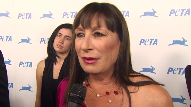 anjelica huston on animal issues the work of peta at the peta's 30th anniversary gala and humanitarian awards at hollywood ca - anjelica huston stock videos & royalty-free footage