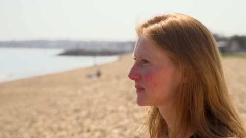 interviews with cathy williamson, wdc end captivity programme lead, james burleigh, sea life trust ambassador, andy bool, head of sea life trust and... - animals in captivity stock videos & royalty-free footage