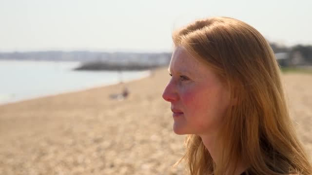 interviews with cathy williamson wdc end captivity programme lead james burleigh sea life trust ambassador andy bool head of sea life trust and and... - captive animals stock-videos und b-roll-filmmaterial