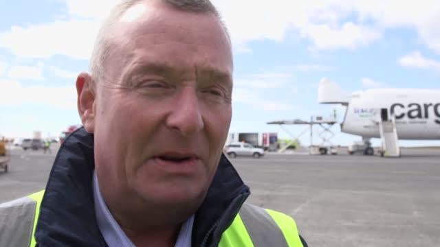 interviews with sea life chief ambassador james burleigh and pilot captain claude zehren of cargolux who flew beluga whales little white and little... - james whale stock-videos und b-roll-filmmaterial