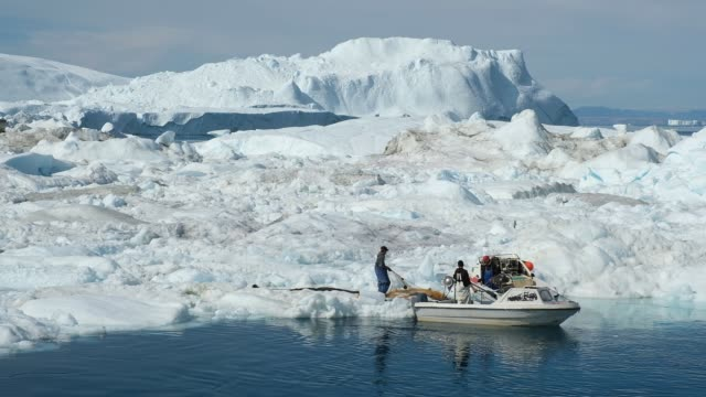 inuit fishermen prepare a net among ice floating at the mouth of the ilulissat icefjord during unseasonably warm weather on july 30, 2019 near... - inuit bildbanksvideor och videomaterial från bakom kulisserna