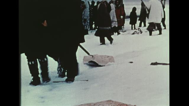 vs inupiat eskimo indigenous peoples cutting up bowhead whale side trimming w/ primitive tools large pieces of meat being dragged over snow ice piece... - valfångst bildbanksvideor och videomaterial från bakom kulisserna