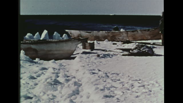 inupiat eskimo indigenous peoples towing boat w/ dog sled, moving boats to ice edge, vs boats on artic ocean water, vs bowhead whale surfacing,... - inuit bildbanksvideor och videomaterial från bakom kulisserna