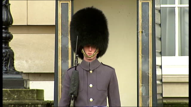 investigates video showing royal guard lashing out at a tourist outside st james's palace; member of royal guard on duty with bayonet fixed member of... - bayonet stock videos & royalty-free footage