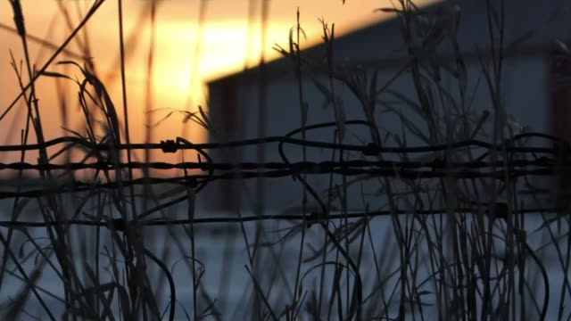 iowa democrats choosing candidate to take on donald trump; iowa: ext / dawn gv sunrise over rural landscape close shot barbed wire and sun rising... - sun roof stock videos & royalty-free footage