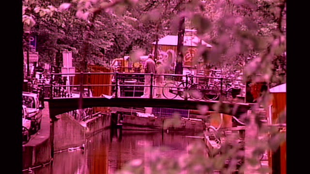 investigation into prostitution and the law t31050533 amsterdam bridge over canal branches of trees in foreground doorway of brothel prostitute... - bordell stock-videos und b-roll-filmmaterial