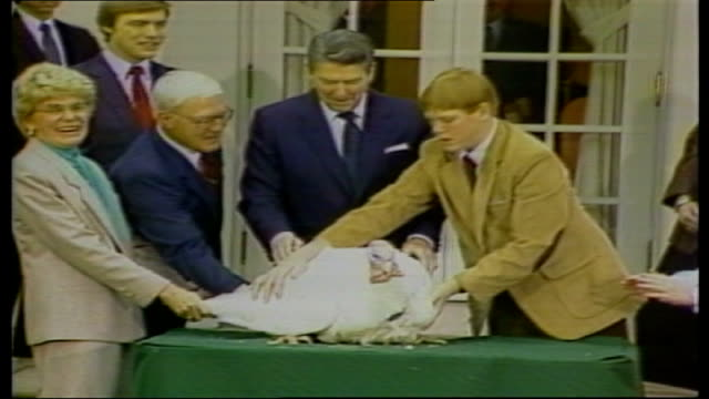 washington dc ext ronald reagan with thanksgiving turkey reporters firing questions at reagan - thanksgiving politics stock videos & royalty-free footage