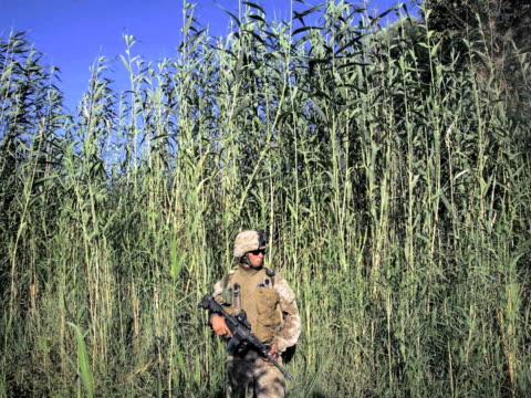 Iraq 5 Years Later