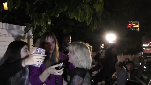 Ireland Baldwin at the W Magazine Celebrates Its 'Best Performances' Portfolio and the Golden Globes at Chateau Marmont in West Hollywood in...