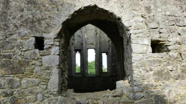 ireland cashel hore abbey windows through church - arch architectural feature stock videos and b-roll footage
