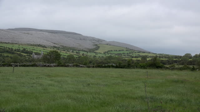 Ireland County Clare rounded karst hill in the Burren