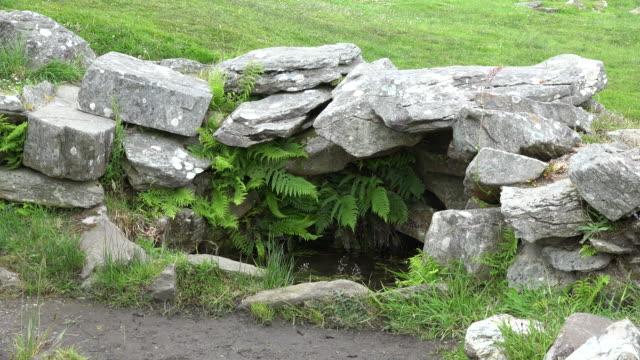 ireland county cork drombeg well with ferns - 先史時代点の映像素材/bロール