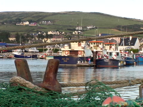 vídeos y material grabado en eventos de stock de ms, ireland, dingle bay with moored boats, fishing nets in foreground - anclado